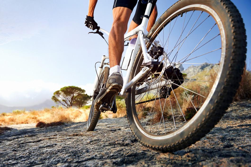 Bike Tune Up >> Bike Tune Ups Ski Rack Sports