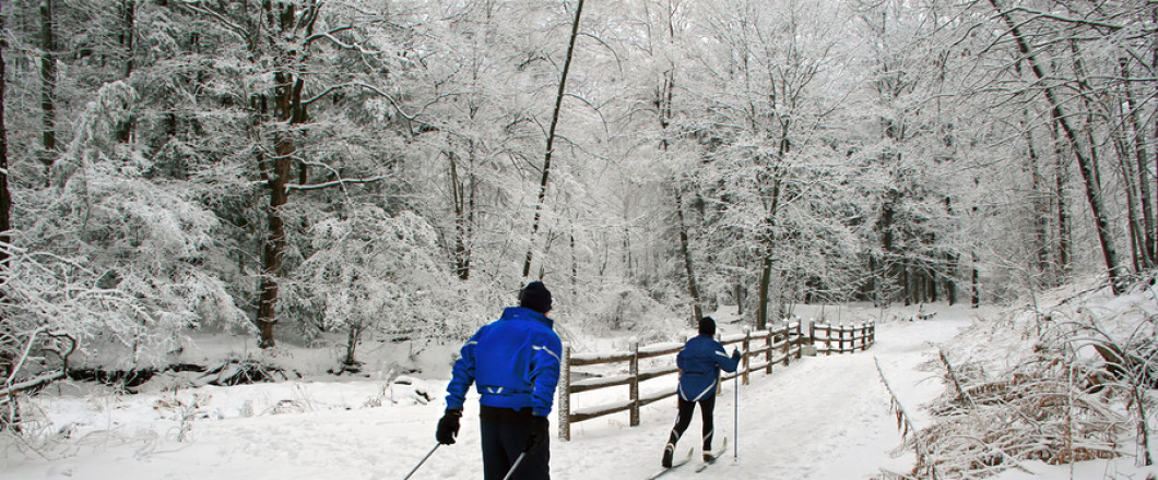 30% off all nordic skis, boots , bindings, poles and snowshoes